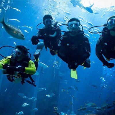 aquarium skuba