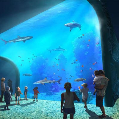 aquarium wall