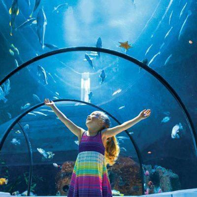 aquarium sky